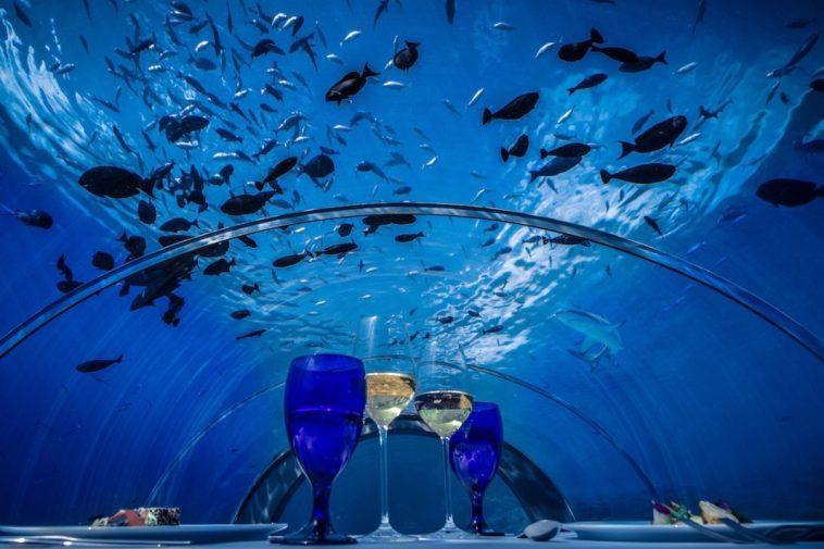 Le plus grand restaurant sous-marin ouvrira aux Maldives
